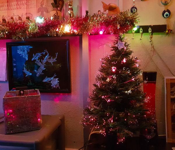 Tree Decoration Christmas Celebration Holiday christmas tree Illuminated Christmas Decoration Christmas Lights Indoors