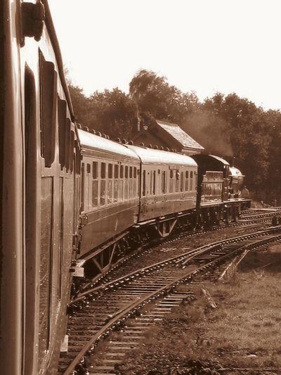 Buckfastleigh Rail