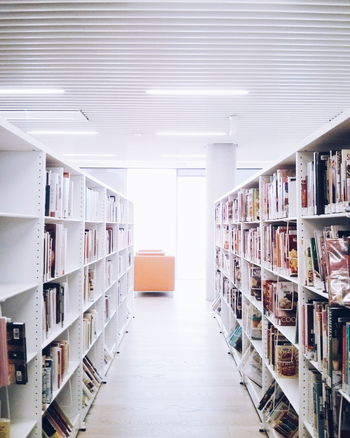 Abundance Arrangement Book Books Bookshelf Ceiling Choice Collection Corridor Diminishing Perspective Flooring In A Row Indoors  Large Group Of Objects Library Library Light And Shadow Modern Order Railing Shelf Stack Storage The Way Forward Variation