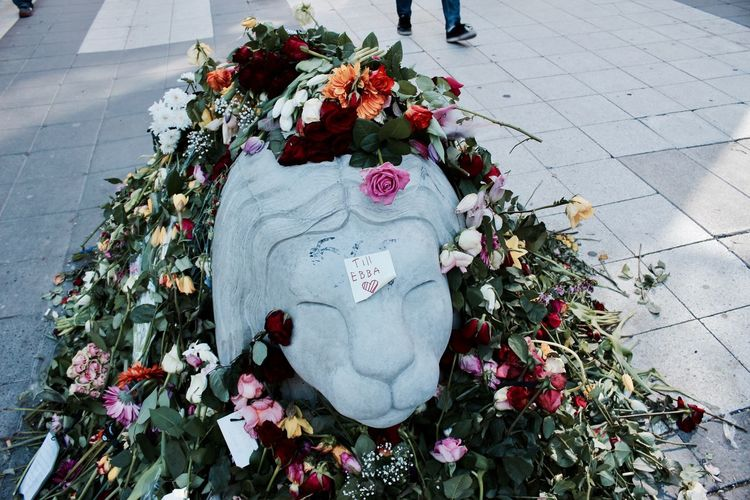 Bouquet Day Death Flower Flower Head Fragility Freshness Grief Growth Lion Lion Statue Loving Words Many Flowers Memorial Memories ❤ Messeges Nature No People Outdoors Plant Sadness Statue Street Of Stockholm Streetphotography Terror Attack