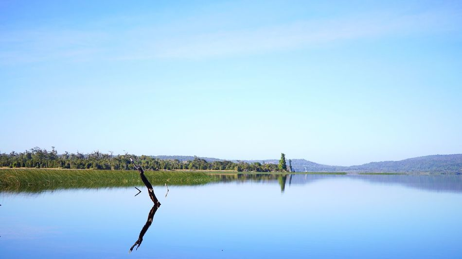 Still simetry Nature Water Lake Scenics Reflection Water Reflections Outdoors No People Calm Simetry Tree Fragility Relaxing Travel EyeEm Best Shots EyeEm Nature Lover Eye4photography  Sony A6000 Chile Beauty In Nature Clear Sky Day Sky Rural Scene