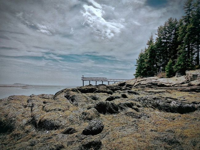 Coastline Relaxing Taking Photos Nature EyeEm Nature Lover On The Beach Life Is A Beach Oceanside Maine Boothbay Harbor Maine