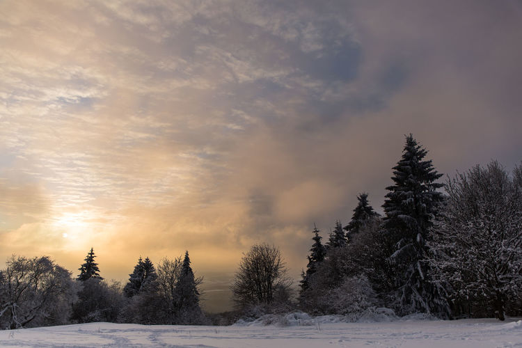 Hoher Meißner winter sunset Nordhessen Beauty In Nature Cloud - Sky Cold Cold Temperature Day Field Hoher Meissner Landscape Nature No People Outdoors Scenics Sky Snow Sunset Tranquil Scene Tranquility Tree Weather Winter