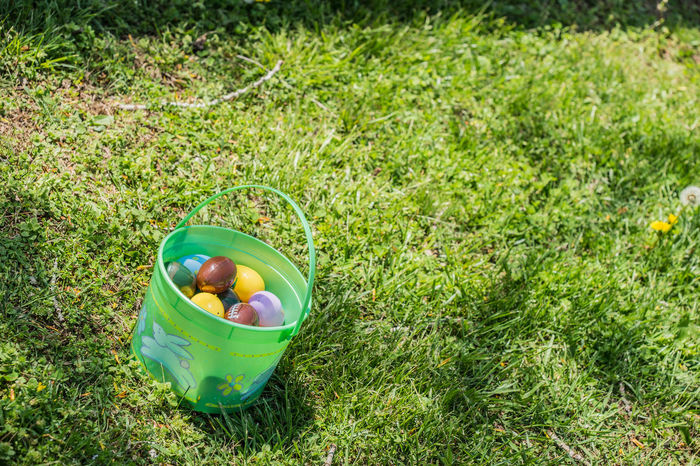 Childhood Day Easter Easter Basket  Easter Egg Hunt Easter Eggs On Display Egg Eggs Food Grass Green - Golf Course Green Color No People Outdoors Plastic Easter Eggs Plastic Eggs Unhealthy Eating Yard