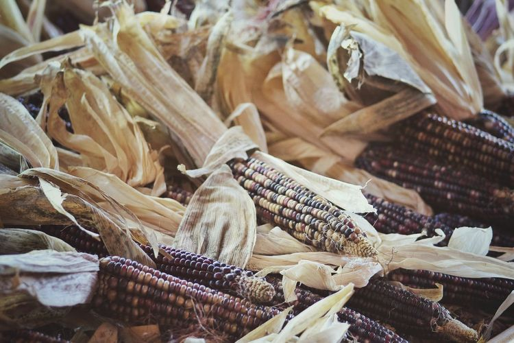 Close-up of corns for sale