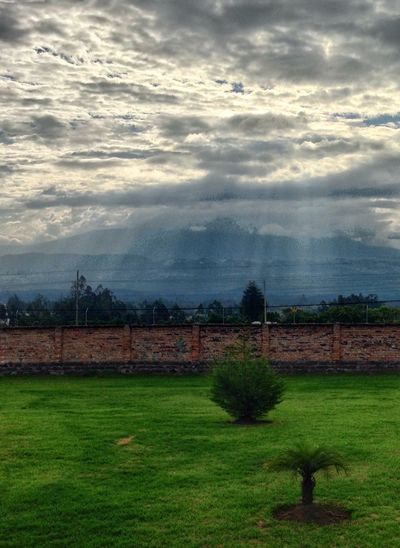 Backyard Grass And Sky Grass Green HDR Clouds And Sky Clouds Light Lines Natural Light Stone Wall Rule Of Thirds Nature Bushes Tree Quito Ecuador