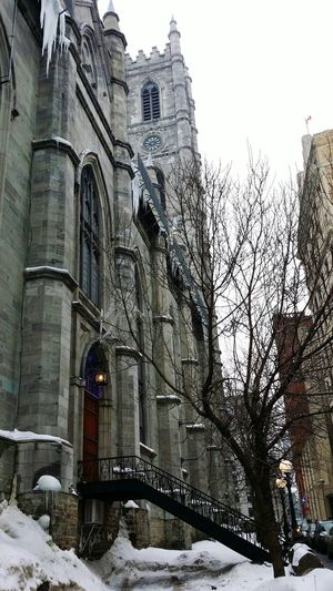 Montreal, Canada Traveling Taking Photos Travel Photography