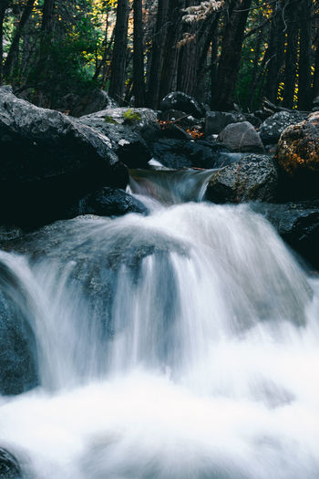 Long Exposure of Stream Flowing over Rocks Beauty In Nature Blurred Motion Day Forest Landscape Long Exposure Motion Nature No People Outdoors Scenics Stream - Flowing Water Tranquil Scene Tranquility Travel Destinations Tree Tree Trunk Water Waterfall