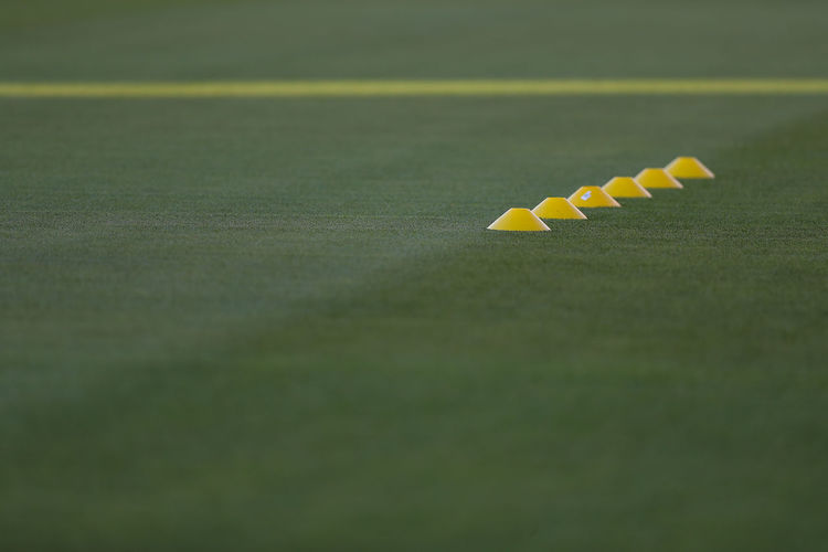 Yellow No People Green Color Selective Focus Day Sport Outdoors Still Life Nature Close-up Absence White Color In A Row Grass High Angle View Sunlight Single Line Copy Space Soccer Field Training