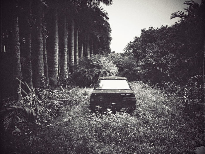 Somewhere in The Redlands The Redla South Florida Abandoned Car Mobilephotography Brian Soko