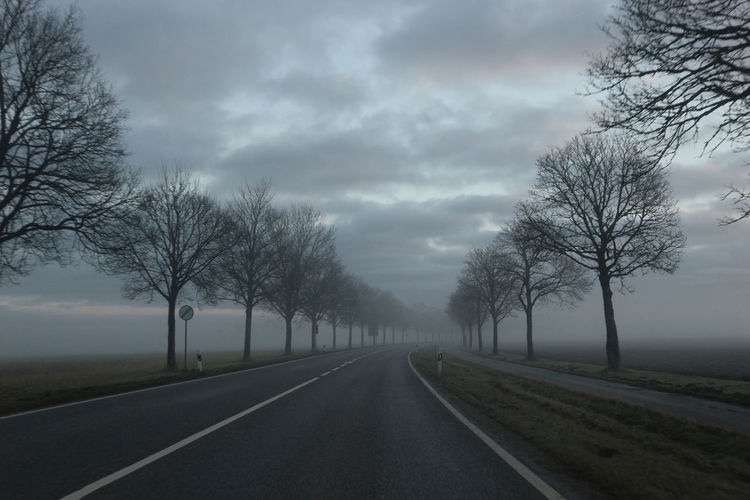 Straße im Nebel Landstrasse Nebel Bare Tree Beauty In Nature Cloud - Sky Day Diminishing Perspective Fog Landscape Nature No People Outdoors Road Scenics Sky Straße The Way Forward Tranquility Transportation Tree Weather