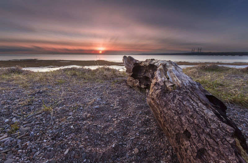 Beach area at Severn beach, Bristol. Bristol Beach Beauty In Nature Cloud - Sky Day Dead Tree Grass Horizon Over Water Nature No People Outdoors Scenics Sea Severn Beach Sky Sunset Tranquil Scene Tranquility Water