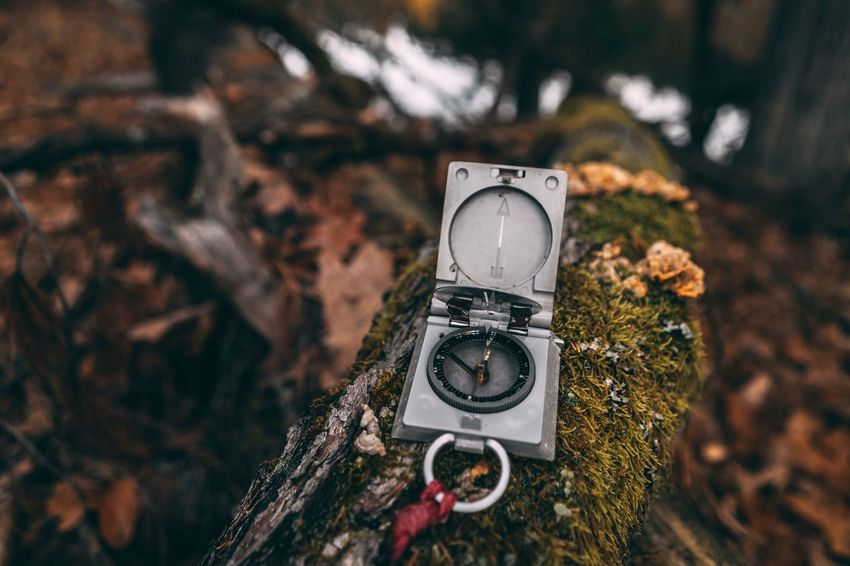 EyeEm Selects Compass Bavaria Landscape Time Close-up Focus On Foreground Tree Outdoors Nature Autumn Direction EyeEmNewHere Fresh On Market 2017
