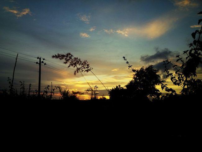 Beautiful sunset beauty of nature