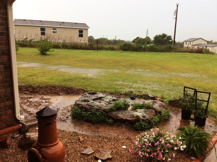 7 day rain