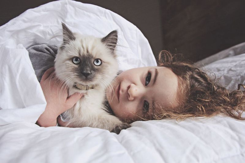 Cute girl lying with cat on bed
