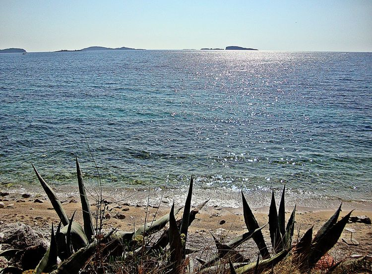Beach in the Srebreno, Dubrovnik Beach Beauty In Nature Clear Sky Day Dubrovnik - Croatia❤ Horizon Over Water Nature No People Outdoors Scenics Sea Sea And Sky Sky Srebreno Tranquil Scene Tranquility Water