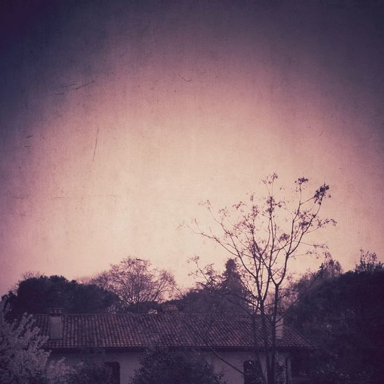 Spring The Dark Landscape Minimalobsession Minimallandscape