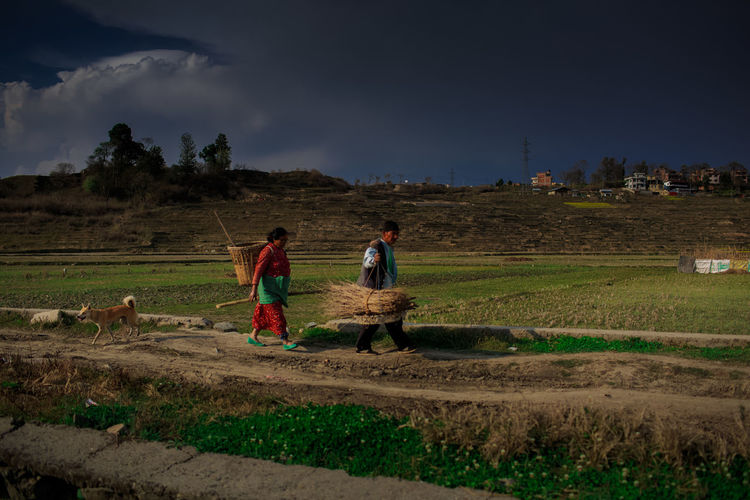 People working on field against sky