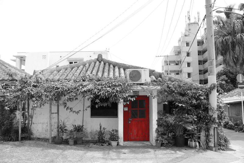 Red Door Landscape Life Lifestyles Okinawa Ishigaki