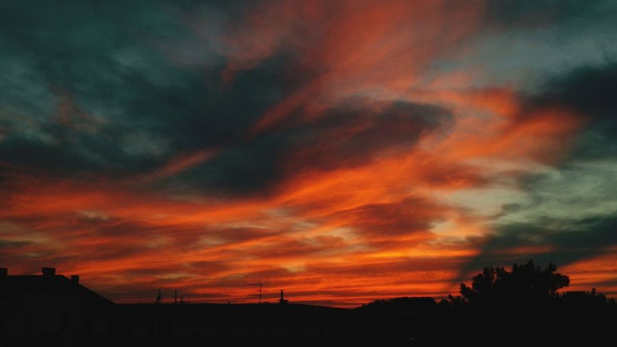 Italy Huaweiphotography SantarcangeloDiRomagna Tree Multi Colored Sunset Silhouette Tree Area Red Dramatic Sky Orange Color Weather Awe Sky Only Romantic Sky Atmospheric Mood Cloudscape Cumulus EyeEmNewHere