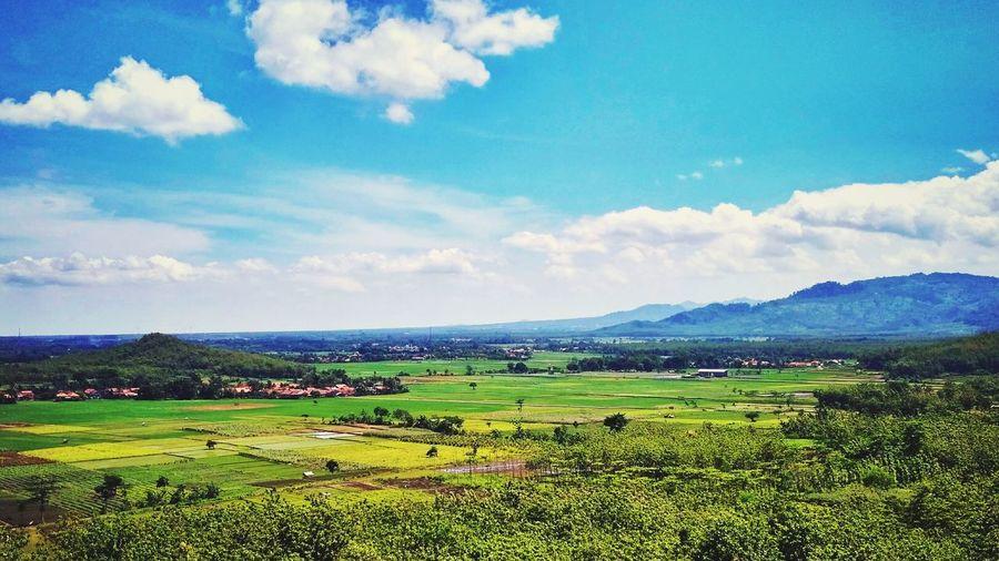 Landscape Agriculture Cloud - Sky Sky Rural Scene Outdoors Landscape