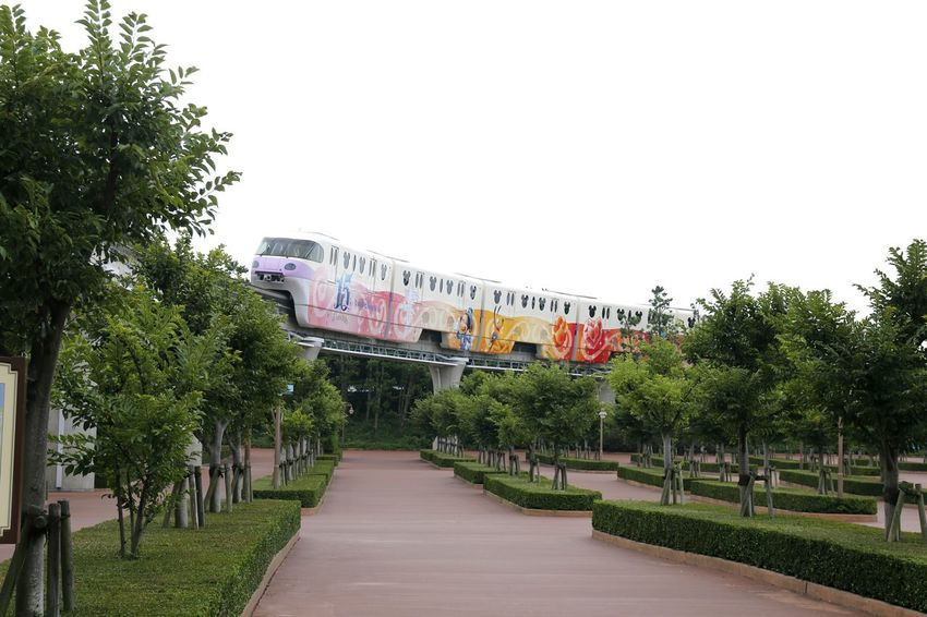 Monorail  Disney Train 東京ディズニーランド (tokyo Disneyland) 東京ディズニーランド 東京ディズニーランドホテル Disneyland Disneyland Tokyo Disneyland Tokyo Resort Disneyland<3 Japan Tokyo Disney Land Disneytokyo Disney Train Tree City Clear Sky Sky Architecture Building Exterior Built Structure