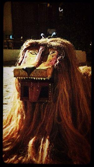 The BIG lion!! ???