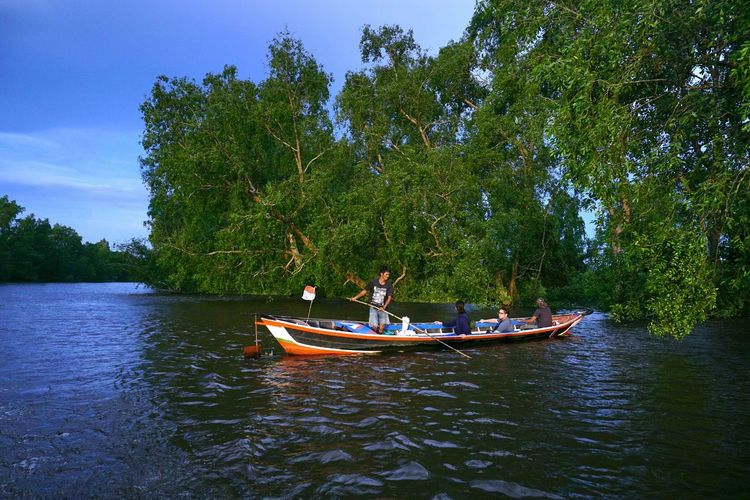 Blue sky Capture Tomorrow Tree Nautical Vessel Water Togetherness Sitting Forest Oar Adventure Sky Boat River Waterfront