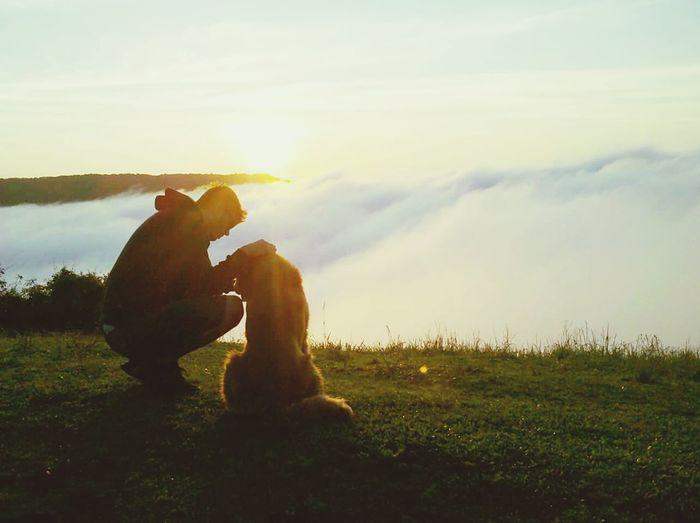 Pet Dog  Pets Dog Nature Beauty In Nature Eyesgreen Goldenretriever Sundae Day Lovedogsforever