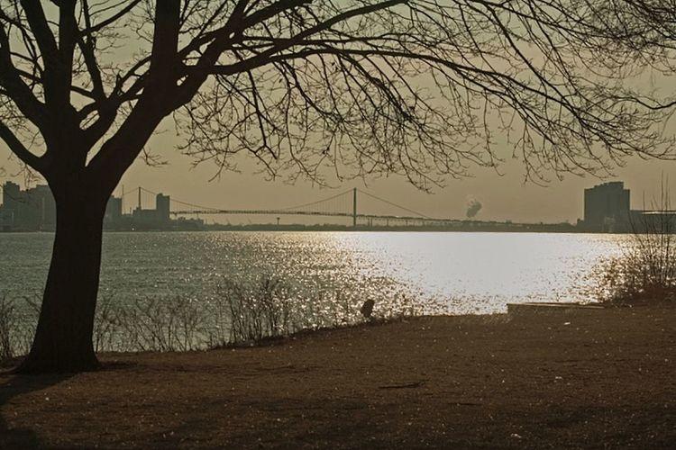 Detroit-Windsor Bridge. March 2014. Detroit-Windsor Bridge Detroit, MI Bridge Sunset Waterscapes Silhouettes