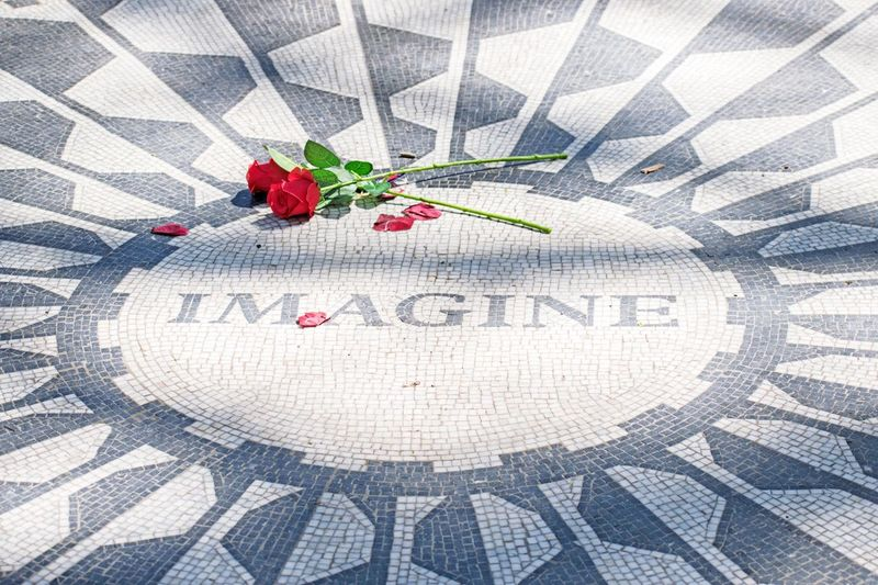 NYC Parks Roses Rose - Flower Rosé Park Central Park Central Park Johnlennon Imagine Imagine Red Pattern Communication Close-up Berry Fruit Strawberry Full Frame Love Backgrounds Positive Emotion Emotion Western Script Design Text Art And Craft
