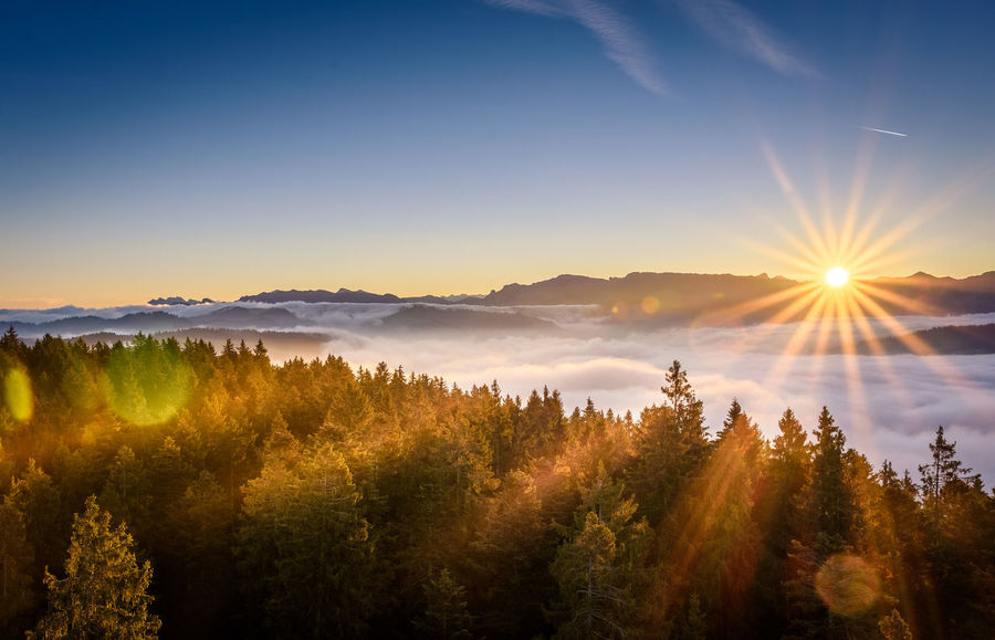 Beauty Beauty In Nature Day Forest Landscape Morning Mountain Natural Parkland Nature No People Outdoors Scenics Sky Social Issues Summer Sun Sunbeam Sunlight Sunrise Sunset Tree Water