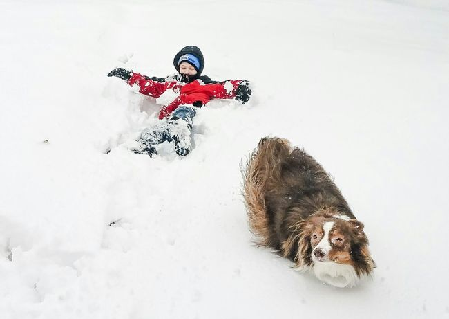 Everyday Joy My stepson and our dog Ginger playing in a foot of snow in the back yard being oblivious to the cold.