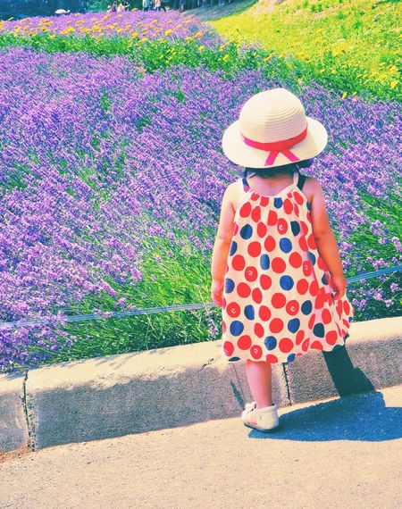 Girl Rear View Sun Hat Straw Hat Outdoors Lifestyles Leisure Activity Enjoying The View Pretty Girl One Person Real People Flower Flower Fields Beauty In Nature Lavender Farm Lavender Field Lavender Colored Lavender Blossoms Candid Photography Candid Farm Tomita Furano Hokkaido Japan