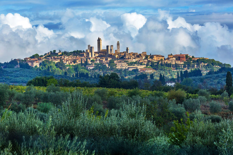 San Gimignano Travel Tuscany Architecture Building Exterior Built Structure Cityscape Cloud - Sky Day Growth Italy Mountain Nature No People Outdoors Sky Travel Destinations Tree