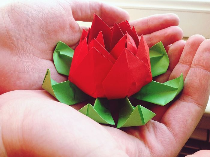 Close-up of hand holding red rose made with papers