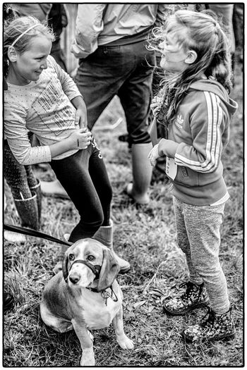 An agricultural show in Swinford, Ireland Agriculture Ireland Animal Themes Childhood Dog Field One Animal Pets