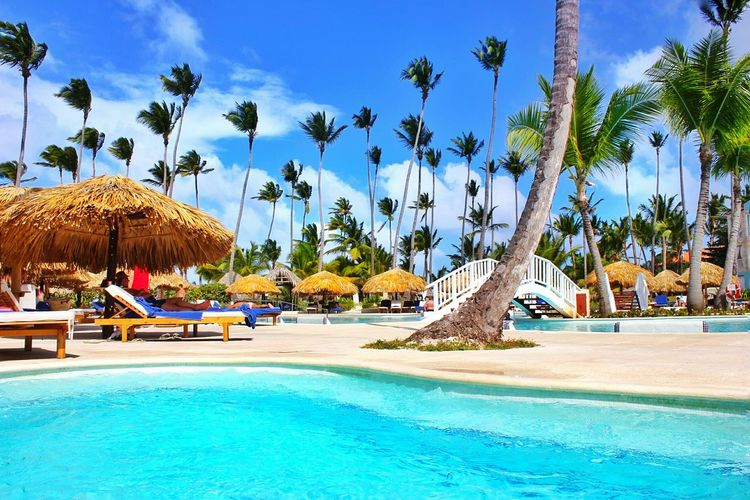 Hanging Out Taking Photos Check This Out Relaxing Relax Relaxing Time Relaxation Relax Time  Pool Poolside Swimming Pool Pool Time By The Pool Chillin By The Pool Resort Puntacana Punta Cana Dominican Republic Traveling Travel Travelling Trip Palm Trees Palm Tree Hut