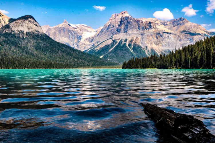Emerald Lake Canada Yoho National Park Mountain Scenics - Nature Water Beauty In Nature Lake Mountain Range Tranquil Scene Tranquility Nature Idyllic No People Outdoors