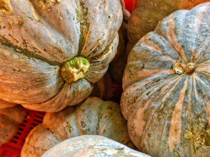 Pumpkin Food And Drink Food Close-up Vegetable Full Frame No People Squash - Vegetable Healthy Eating Gourd Backgrounds Outdoors Market Nature Freshness Day Horizontal