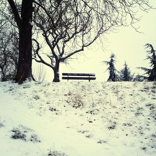 the park at the end of the iceage