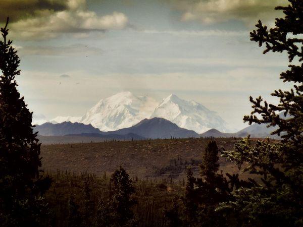 Mount McKinley Mount Denali Denali National Park & Perserve Alaska Hiking Mountains Landscape_Collection Traveling Enjoying Life Perspectives On Nature