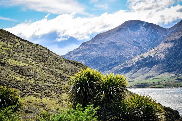 Scenic mountain views. EyeEm Best Shots EyeEm Best Shots - Landscape EyeEm Nature Lover Beauty In Nature Cloud - Sky Environment Green Color Growth Idyllic Landscape Mountain Mountain Peak Mountain Range Nature New Zealand No People Non-urban Scene Outdoors Plant Remote Scenics - Nature Sky Tranquil Scene Tranquility Tree