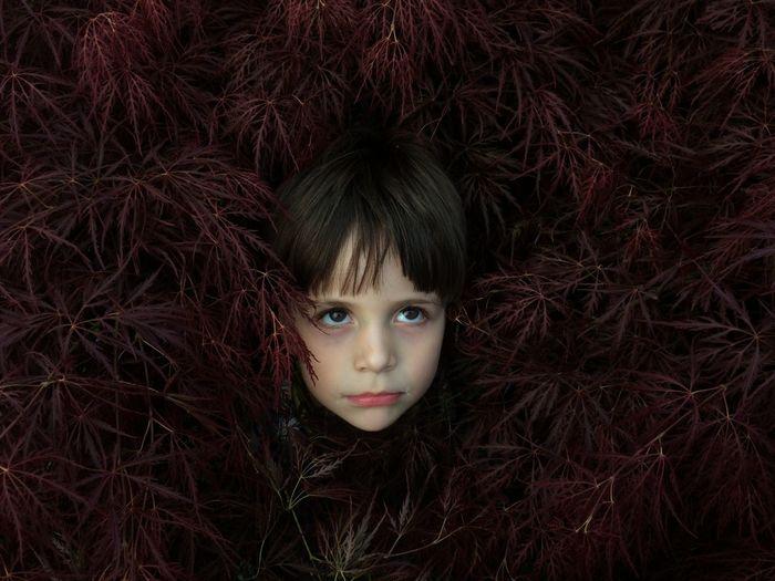 Portrait of boy in bush