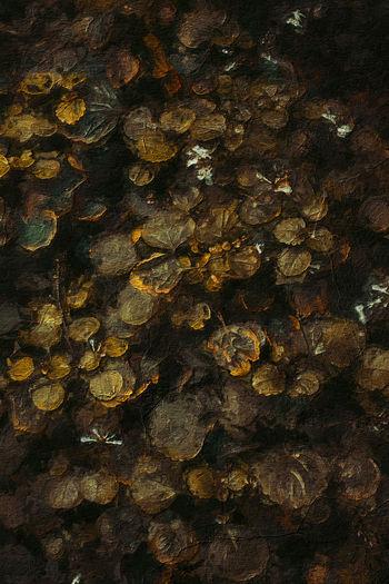 Full frame shot of rock in water