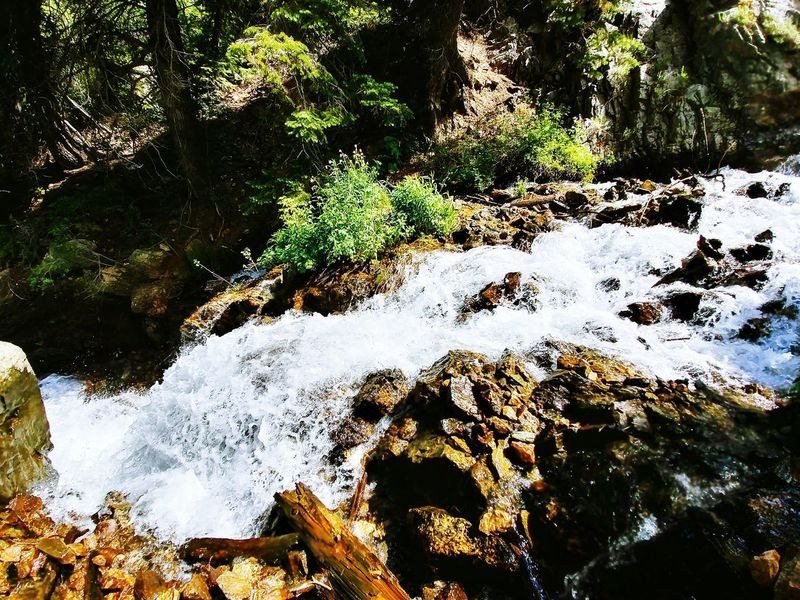 Tree Water Day No People Outdoors Nature Full Frame Motion Mountain Range Summer High Angle View Sunlight Beauty In Nature Tranquility Scenics Green Color WasatchFront Wasatch Mountains Forest Hiking Trail Hikingadventures Rocky Landscape Rocks And Water Rippled