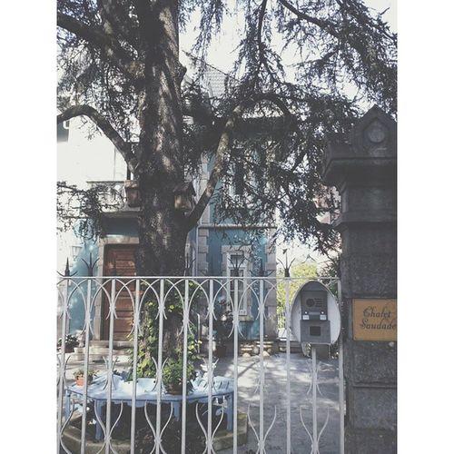 Fairytale-like. ChaletSaudade Sintra Portugal Vscocam