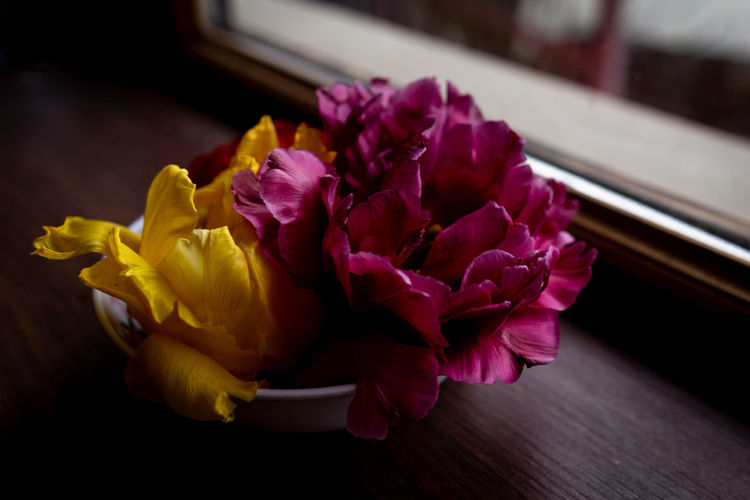 Flower Flowering Plant Freshness Plant Beauty In Nature Vulnerability  Fragility Petal Indoors  Close-up No People Nature Flower Head Inflorescence Yellow Focus On Foreground Table Pink Color Flower Arrangement Purple Bouquet Spices
