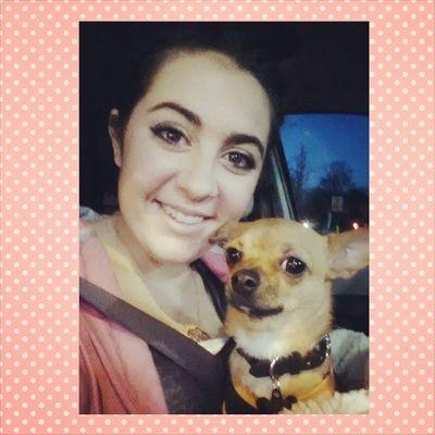Love my pup Dailyzigga Ziggysmalls Instachihuahua
